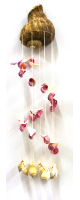 Tropical Sea Shell Windchime